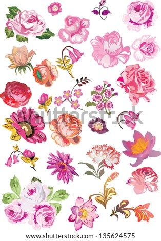 illustration with different flower collection isolated on white background