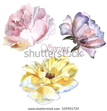 illustration with flowers isolated on white background - stock photo