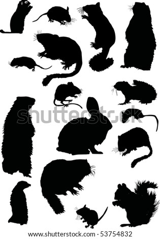 illustration with small animal silhouettes collection