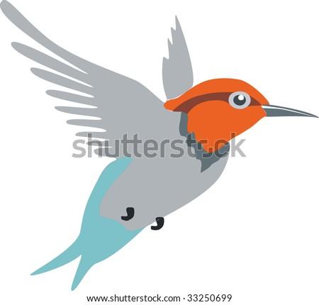 Image. Colibri. Vector version in portfolio - stock photo