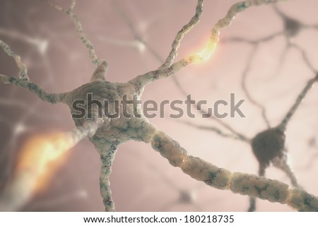Image concept of neurons from the human brain. - stock photo