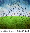 image from outdoor background series (sky and grass) - stock photo
