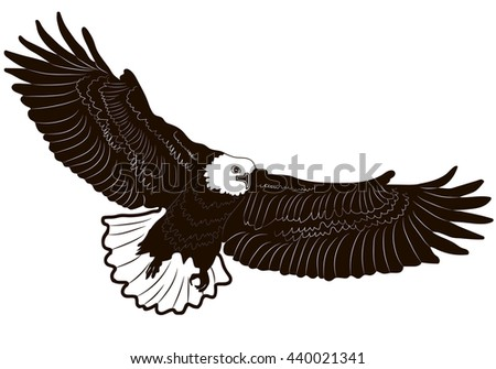 Image graphic style of eagle isolated on white background.