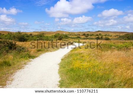 Image into the natural reservat of Eierland of the island Texel in Netherlands