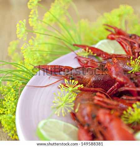 Image of a bowl of crayfish and sprigs of dill for a traditional swedish crayfish party. - stock photo