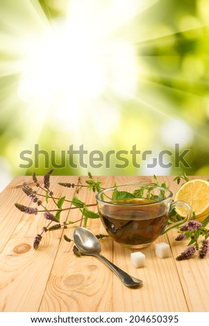 image of a cup with a delicious mint tea and twigs on the table against the sun