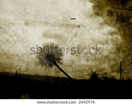 Image of a dandelion from below with birds flying in the sky - stock photo