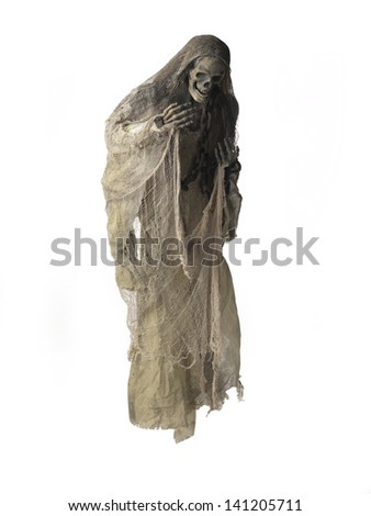 Image of a human skeleton over white background. - stock photo