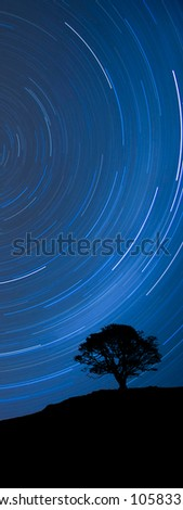 Image of a isolated tree silhouette on a hill with a blue background at night with startrail, as a banner for website - stock photo