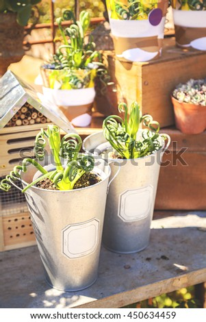 Image of a potting table with plants and a butterfly house.  - stock photo