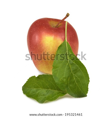 image of a ripe apple on a white background