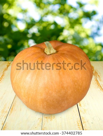 image of a ripe pumpkin on a wooden table closeup - stock photo