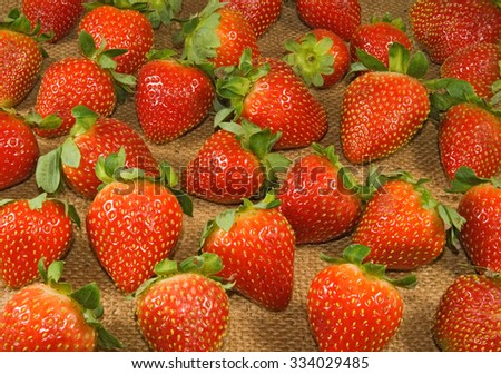 image of a ripe strawberry on a white background closeup - stock photo