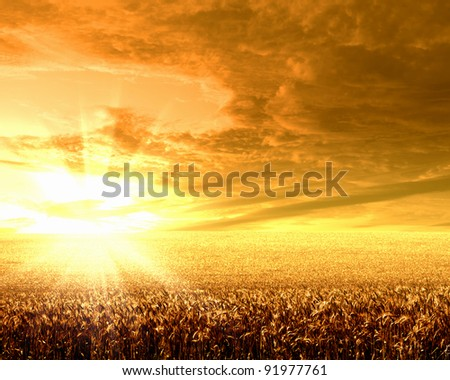 Image of a rural landscape under shining sunlight - stock photo