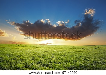 Image of a sunset over a wheat farm in South Africa