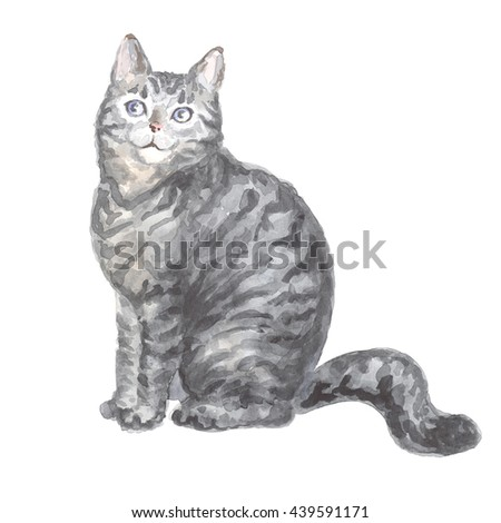 Image of a thoroughbred sitting silver tabby cat. Watercolor painting.