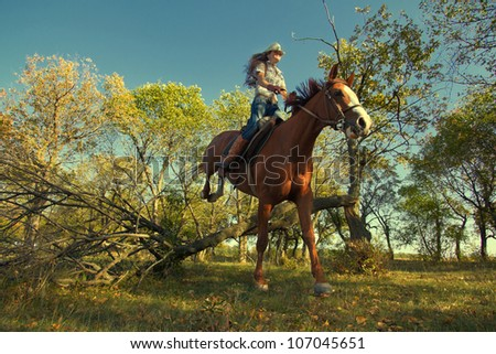 Image of Beautiful girl with purebred horse, jumping a hurdle in forest - stock photo