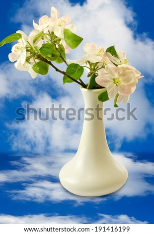 image of blooming branch against the sky