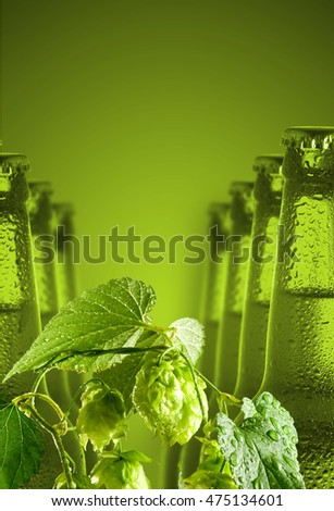 image of bottles of beer and hop close up