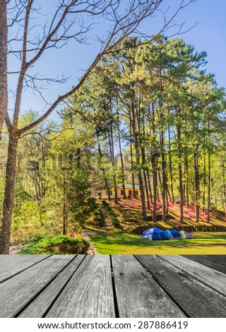 image of Camping in the Forest . - stock photo
