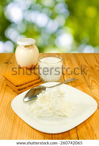 image of dairy products on a table
