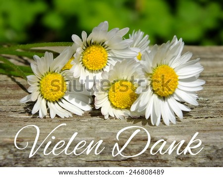 Image of daisies with German lettering - stock photo
