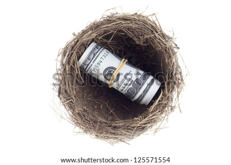 Image of dollars with bird nest isolated on white background