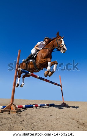 Image of  female jockey with purebred horse, jumping a hurdle.