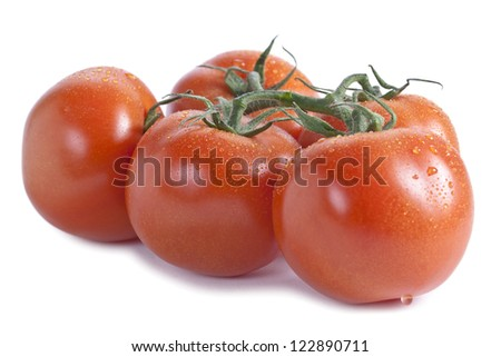 Image of fresh tomatoes having a wet surface against white background - stock photo