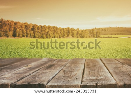 image of front rustic wood boards and background of green grass field and trees in forest. image is retro toned  - stock photo