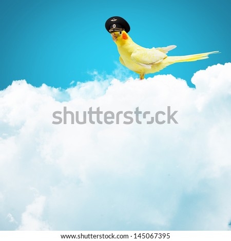 Image of funny parrot in funny hat - stock photo
