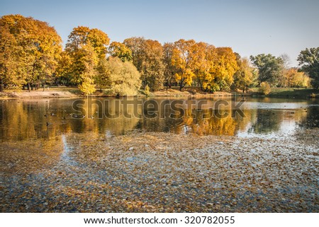 Image of golden autumn in  Moscow parks, Russia