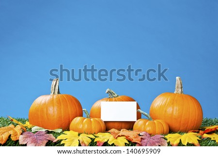 Image of halloween pumpkins arranged with placard and autumn leaves against blue background.