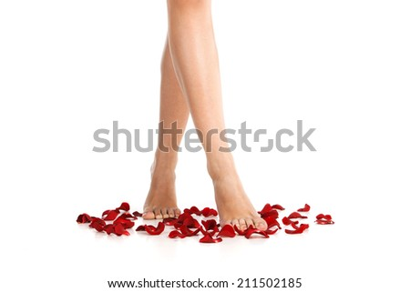 Image of healthy long woman's legs. beautiful feet of girl walking on rose petals over white.  - stock photo