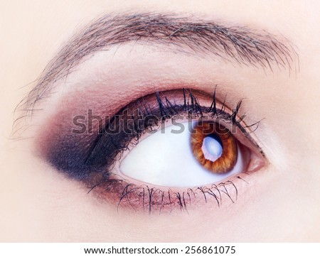 image of human eye, brown iris, close up - stock photo