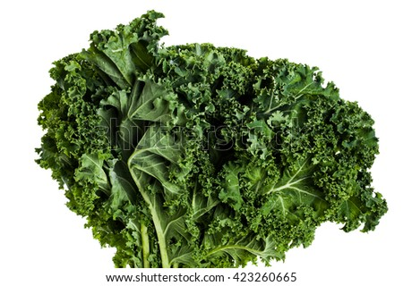 Image of kale, close-up, with white background