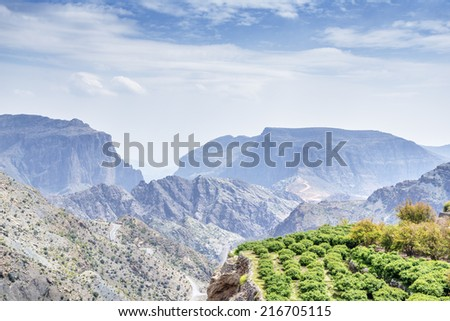 Image of landscape trees on Jebel Akhdar Saiq Plateau in Oman - stock photo