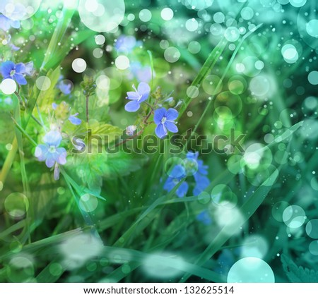 image of little blue flowers in the spring background/ Morning Fresh Landscape with sun blur/spring or summer background