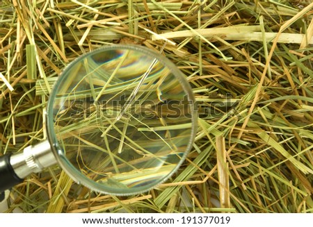 image of loops and needles in the hay - stock photo