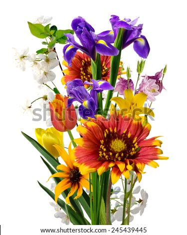 image of many beautiful flowers in the garden - stock photo
