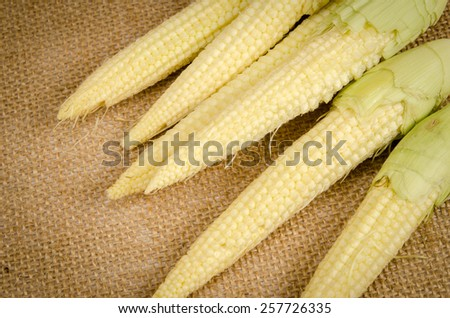 Image of mini corn on brown sack background - stock photo