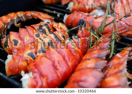 Image of obsters on a grill close up with rosemary - stock photo