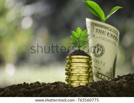 Image of pile of coins and rolled bank note with plant on top showing business, saving, growth, economic concept