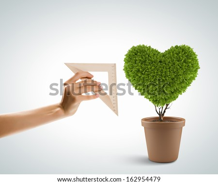 Image of plant in pot shaped like heart - stock photo