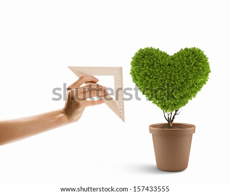 Image of plant shaped like heart. Environment concept - stock photo