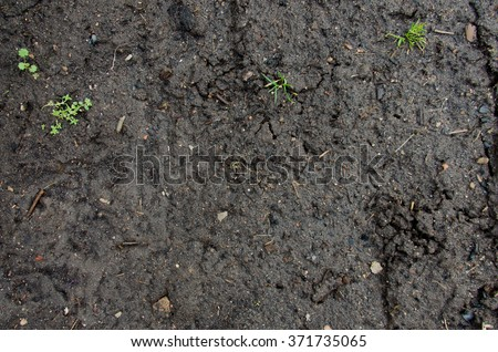 Image of red soil texture. Drought. soil dirt texture with some fine grain in it. Soil texture layers for natural background