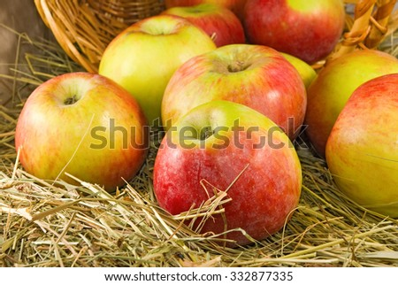image of ripe apples close-up - stock photo