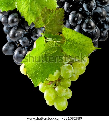 image of  ripe grapes in the garden closeup