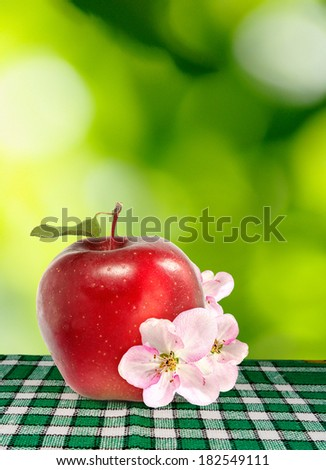 image of ripe red apple on a green background - stock photo