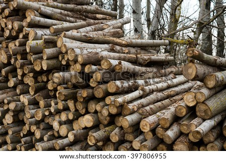 image of stacked logpile and wood - stock photo